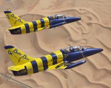 F&E – Al Ain Aerobatic Show